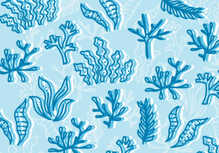 【海苔图片】商业用的海苔图片下载,完整的图示素材下载