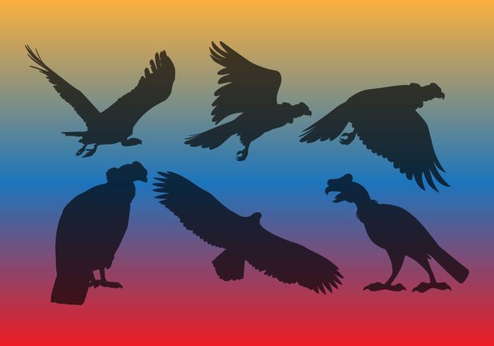 禿鷹矢量圖片素材下載