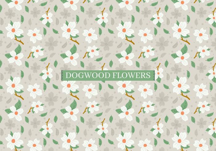 ハナミズキの花パターン素材ダウンロード