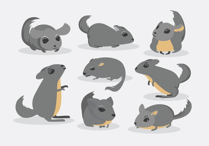 チンチラ無料 イラスト無料ダウンロードillustrator用パターン イラレ