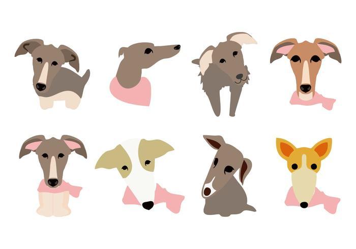 ホイペット犬の顔iconイラスト無料ダウンロードイラスト用イラスト材料