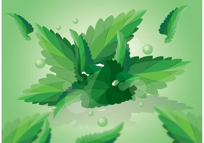 グリーンミントの葉パターンfree download