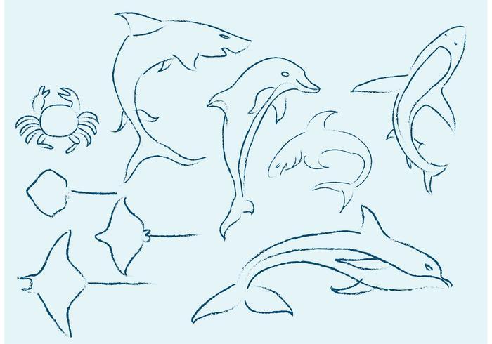 【海洋生物的草图图片】商业常用的海洋生物的草图图片下载,细致的向量图档素材免费下载
