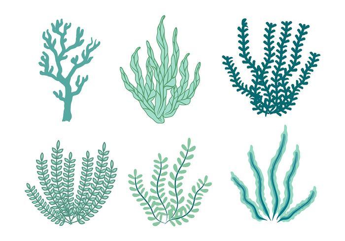 【海苔矢量图】插图用的海苔矢量图下载,精美的手绘图素材包下载