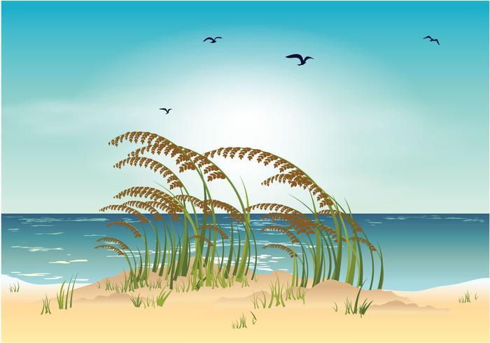 【海燕麦海滩图案】做设计用的海燕麦海滩图案下载,齐全的图型免费下载