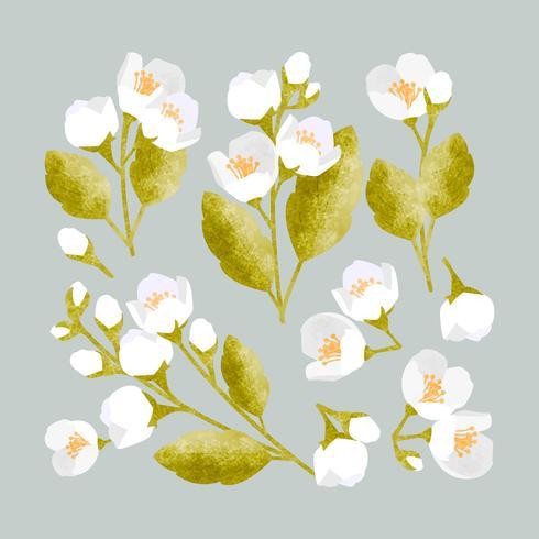手描きのジャスミンの花イラスト 素材素材ダウンロードオシャレpattern