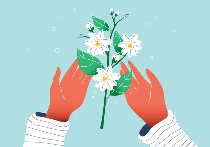 平面白いゴージャスなジャスミンの花を手にパターン素材集ダウンロード
